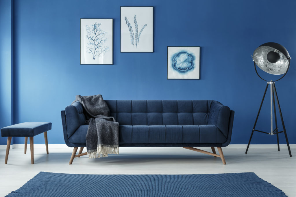 fancy living room painted blue